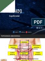 2- HIGADO NORMAL-V2.pdf