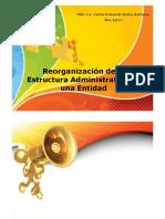 4. Estructura organizativa – proceso de reorganización - Estuardo Godoy.pdf