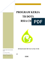 PROGRAM KERJA TIM TB DOTS