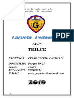 2019_Carpeta Pedagógica_Trilce.docx