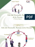 Ciclo_DHP_Primera_Etapa