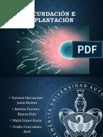 Fecundación-e-implantación final