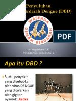 Penyuluhan DBD.pptx