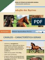 Ciclo reprodutivo equinos