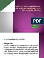 Anatomi dan fisiologi system perkemihan, reproduksi,.pptx