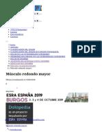 Músculo_redondo_mayor__Dolopedia