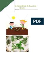 royecto de Aprendizaje de Segundo Grado.docx