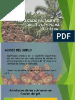 FERTILIZACIÓN ALTAMENTE PRODUCTIVA EN PALMA ACEITERA