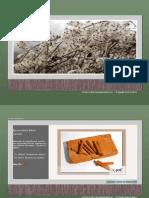 Catalogue Graine de Nature