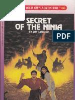 310095790-Secret-of-the-Ninja-Choose-Your-Own-Adventure-66.pdf