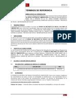 TDR - ESTUDIO DE MEC. SUELOS 2019