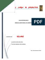 GUIA METODOLOGIA DE DRENAJE LONGITUDINAL. NELAME.pdf