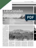 GDM en Granada Hoy 22