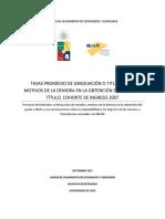 Informe.-Tasas-Promedio-de-Graduación-o-Titulación-y-Motivos-de-la-Demora-en-la-Obtención-del-Grado-o-Título-2014
