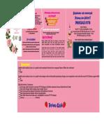 leaflet ancol