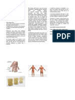 Doenças osteomusculares.docx