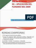 acuerdo plenario 001-2009 - RONDAS CAMPESINAS