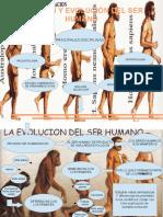 Mapa Argumental-Origen y Evolución del Ser Humano
