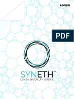 SYNETH Brochure PRINT LAYOUT