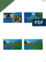 Millennium Development Goals.pdf