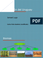Vegetación del Uruguay.ppt