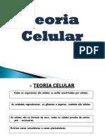 Nº2 - Teoria Celular