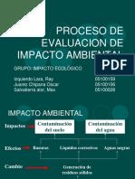 EL PROCESO DE EVALUACIÓN DEL IMPACTO AMBIENTAL