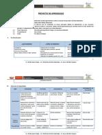 PROYECTO DE APRENDIZAJE - SESIÓN.pdf