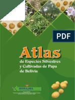 Atlas de especies silvestres y cultivadas de papa de Bolivia.pdf