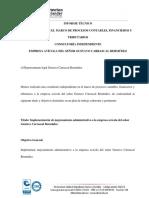 3. INFORME FINAL DE LA CONSULTORÍA EN PROCESOS CONTABLES, FINANCIEROS Y TRIBUTARIOS