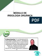 Slide iridologia Organica