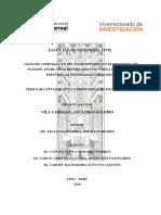 VILA CARBAJAL EUCLIDES GLICERIO- TITULO PROFESIONAL