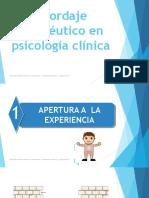 2. ABORDAJE TERAPEÚTICO EN PSICOLOGÍA CLINICA 2018
