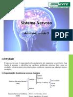 Aula 9 - Sistema nervoso