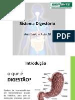 Aula 10 - Sistema digestório