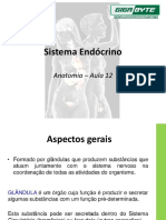 aula 13 - Sistema Endócrino