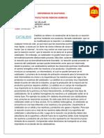 PRACTICA DE CATALISIS ( INVESTIGACION )