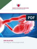 Eileiter-Weg-zur-Schwangerschaft-Kinderwunschzentrum-an-der-Oper