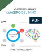 1.2 Cerebro del niño.pdf