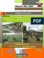 perfil tecnico raccaraccay.pdf