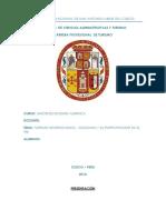 TURISMO INTERNACIONAL Y SU INFLUENCIA EN EL PBI NACIONAL.docx