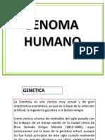 Clase N° 5 Genoma Humano