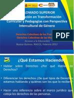 Presentación FInal-Derechos Pueblos-Derechos de las Mujeres-CEIMM 200217