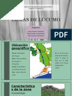 LOMAS DE LÚCUMO - FINAL, FINAAAL.pptx