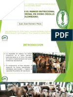 Copia de Presentacion Juan Jose Romero Meza Ovinos Congreso de Tunja.pptx