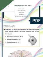 NERVUS 3,4,6.pptx