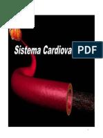 AnatomiayFisiologiaCardiovascular_W
