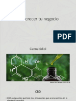 CBD great full.pdf