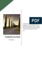 La Tuberculosis Pulmonar( Monografia Final)