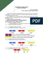 Analiza fonetică INITIATIVE DIDACTICE 2